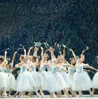 miami-city-ballet-nutcracker