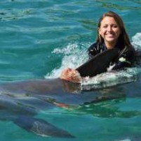 miami-seaquarim-dolphin-encounter-coupon
