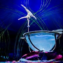 cirque-amaluna-water-bowl
