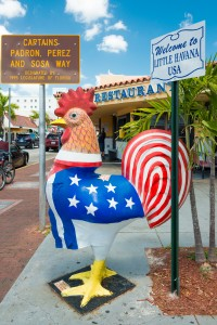 MIAMI,USA - MAY 19,2014 : Symbolic rooster sculpture with the co