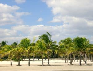 Crandon_Park_Modified