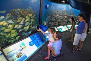 Florida Keys Eco-Discovery Center. Photo by Andy Newman/Florida Keys News Bureau)