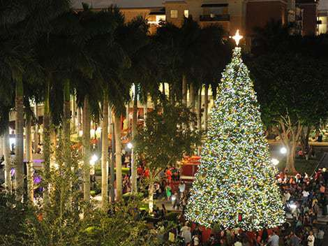 & Free holiday events in November around Miami - Miami on the Cheap azcodes.com