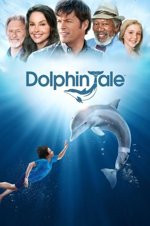5 Movie At The Barnacle Dolphin Tale Miami On The Cheap