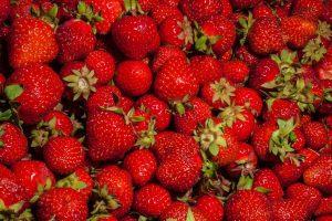 U-pick farms around Miami