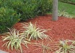 Free mulch for pickup