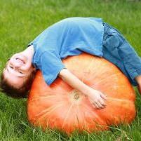 halloween-pumpkin-patch