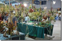 Tamiami International Orchid Festival