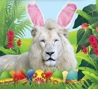 Jungle Island $7 child admission coupon for Easter