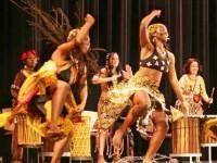 miami-world-music-festival-africa