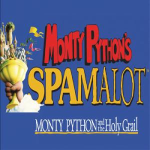 monty-python-spamalot-discount