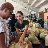 North - Free Food Distribution